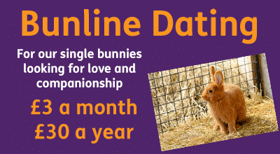 Bunline Dating