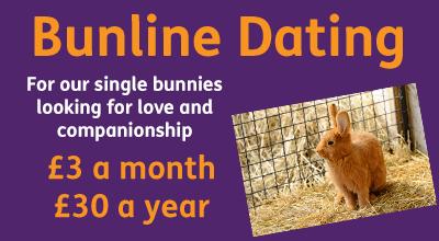 Bunline Dating