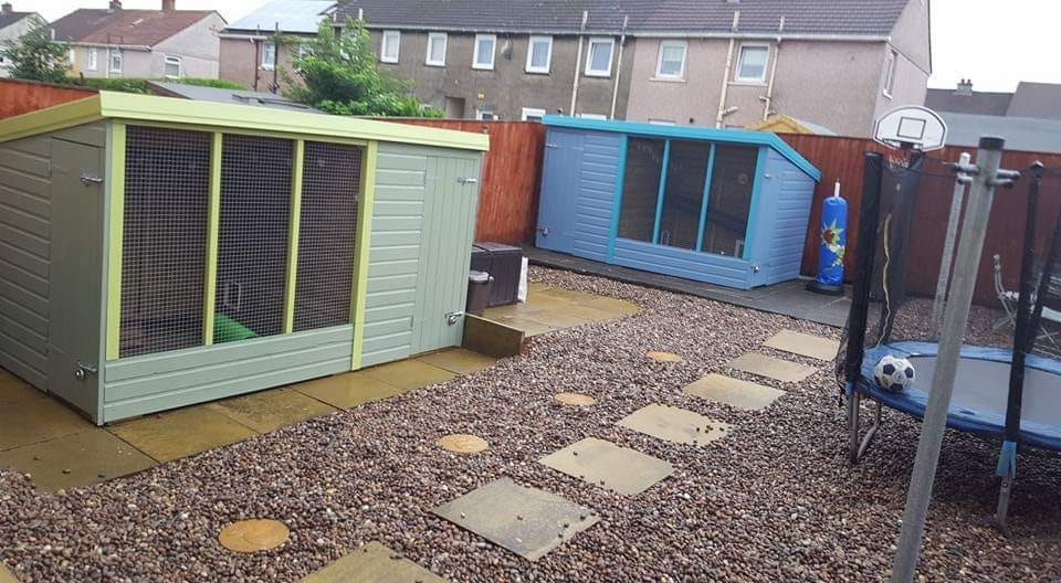 One of our foster sheds (and the foster carer's own rabbit shed too!)