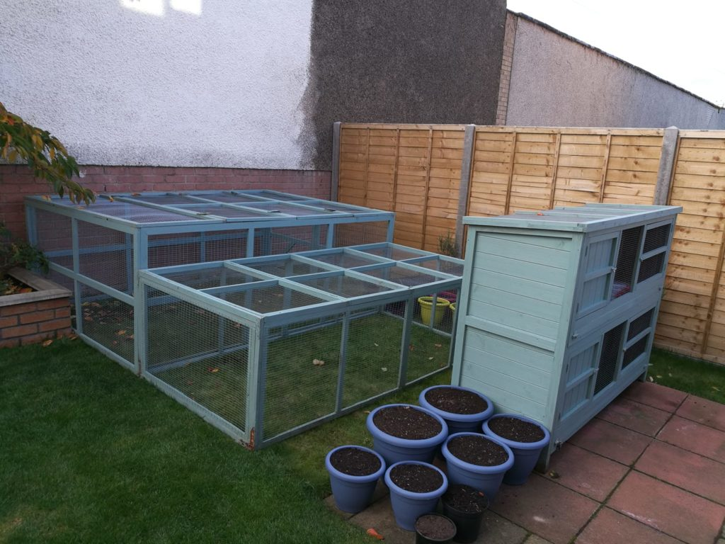 A double 6ft seperated hutch with each hutch linked by runaround pipes to their own separate run space.