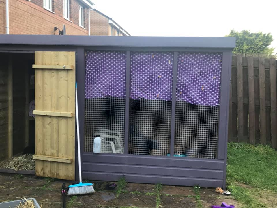 One of our 10ft x 6ft foster sheds.