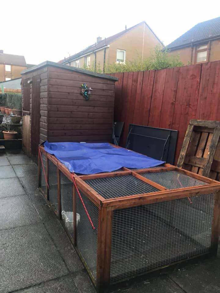 A 7ft x 5ft shed with permanent access to an 8ft x 4ft run, exceeding overall RWAF recommendations.