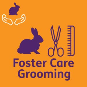 FosterGrooming