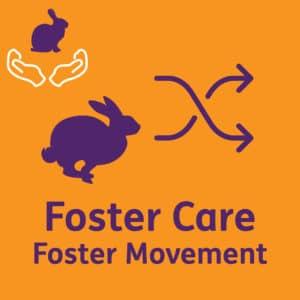 FosterSwap