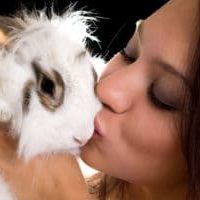 Portrait of young woman kissing little rabbit. Isolated on black
